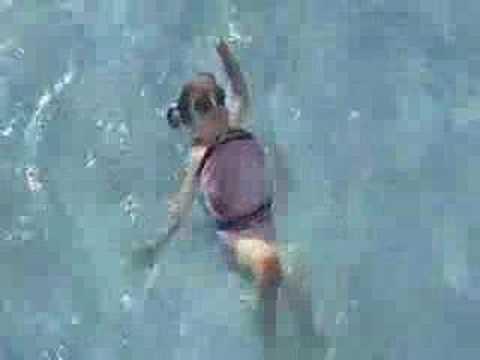 SwimFin
